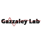 Gazzaley Lab