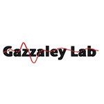 2015egazzaley